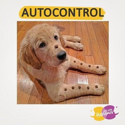 como manejar el autocontrol www.mejorhablemos.us